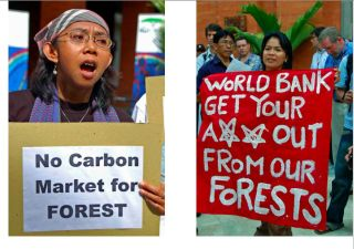 Pic-demo-No_WB-outofCarbonmarket.jpg