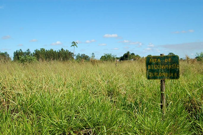Quilombola fields land reclaimation_web
